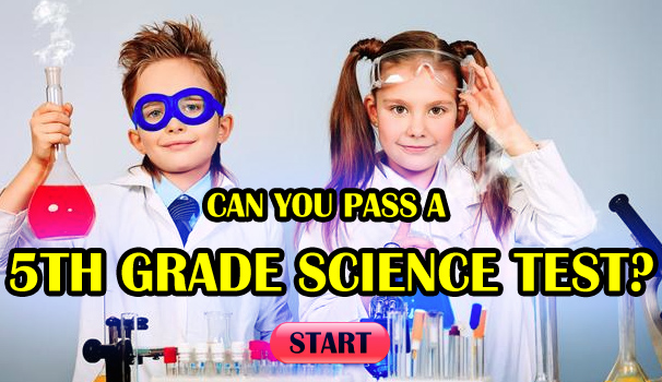 Can You Pass A 5th Grade Science Test?