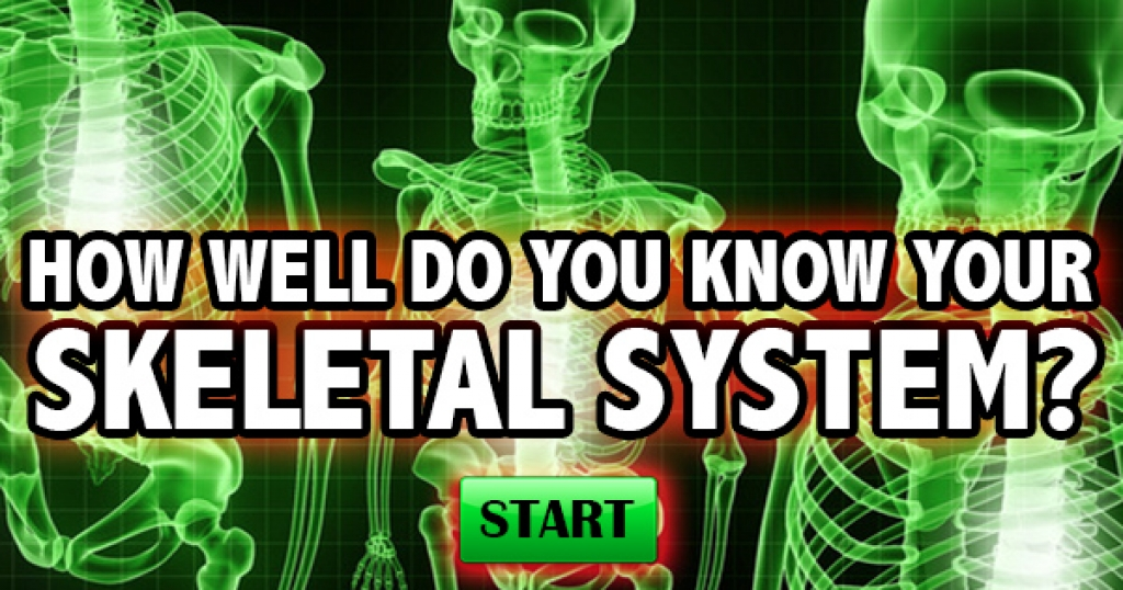 How Well Do You Know Your Skeletal System?