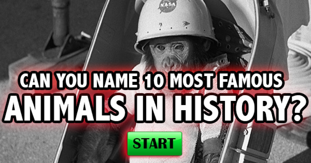 Can You Name The 10 Most Famous Animals In History?