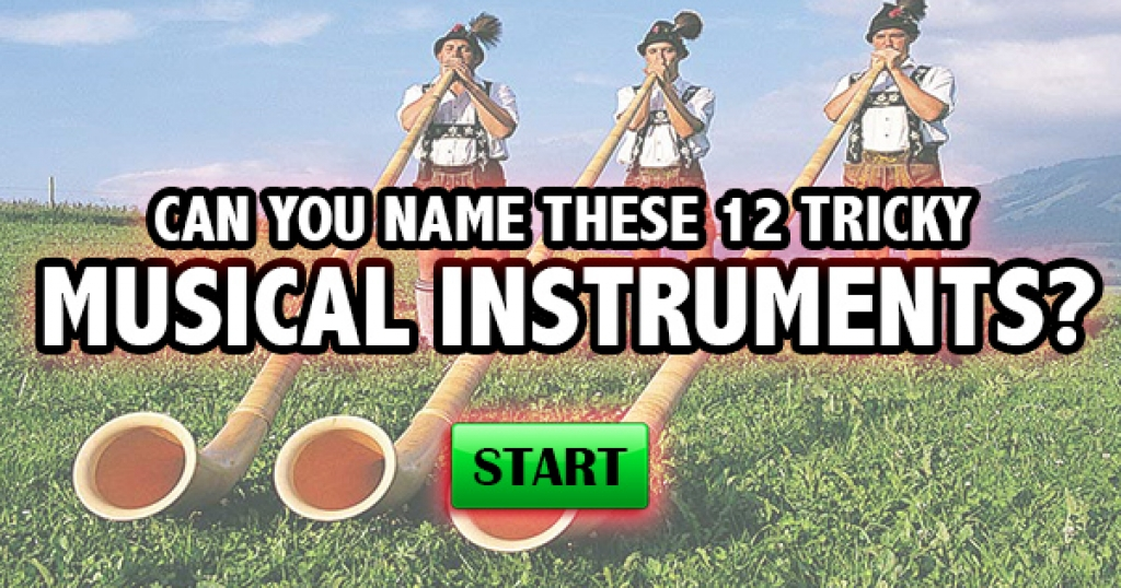 Can You Name These 12 Tricky Musical Instruments?
