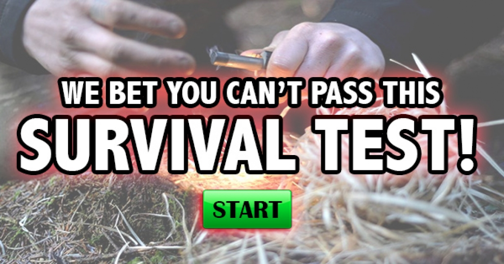 We Bet You Can't Pass This Survival Test!