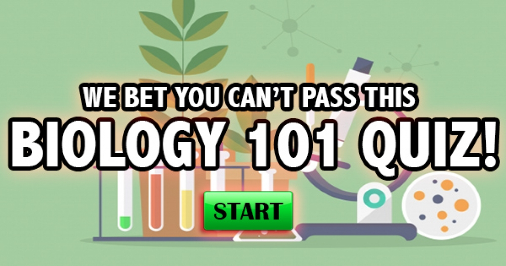 We Bet You Can't Pass This Biology 101 Quiz!